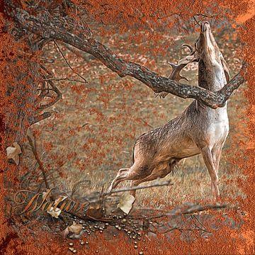 Hirsche in der Brunftzeit von Carla van Zomeren