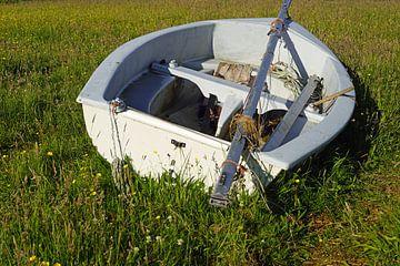 Ruderboot auf einer Wiese von Babetts Bildergalerie