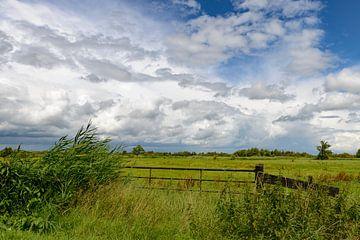 Wolkenlucht boven de Wieden van