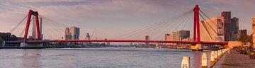 Panorama Willemsbrug Rotterdam van