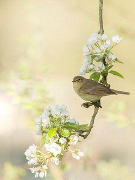 lente van Ina Hendriks-Schaafsma