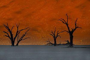 Zonsopkomst Sossusvlei, Namibie, Afrika van Michael Kuijl
