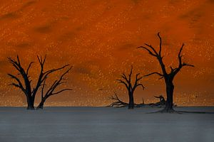 Zonsopkomst Sossusvlei, Namibie, Afrika