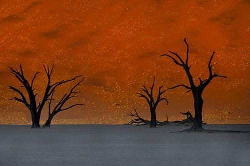 Zonsopkomst Sossusvlei, Namibie, Afrika van
