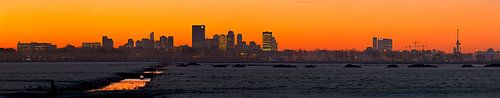 Panorama Rotterdam gezien vanaf de polder