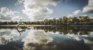 meer van Bjorn Brekelmans
