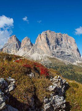 Langkofel - l'emblème du Tyrol du Sud