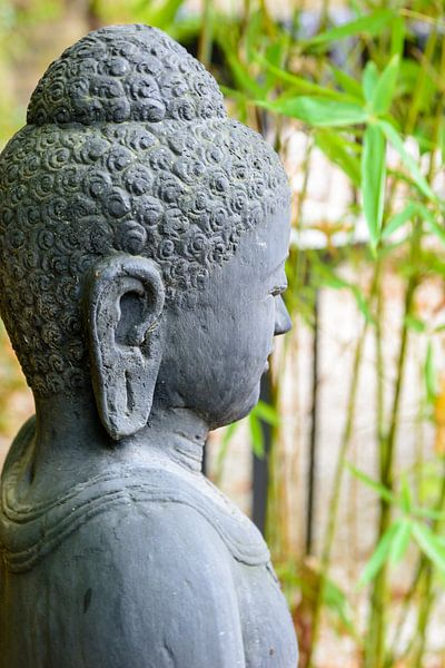 statue of buddha in zen garden sur 7Horses Photography