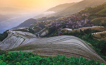 Sonnenaufgang über den Reisfeldern in China von Claudio Duarte