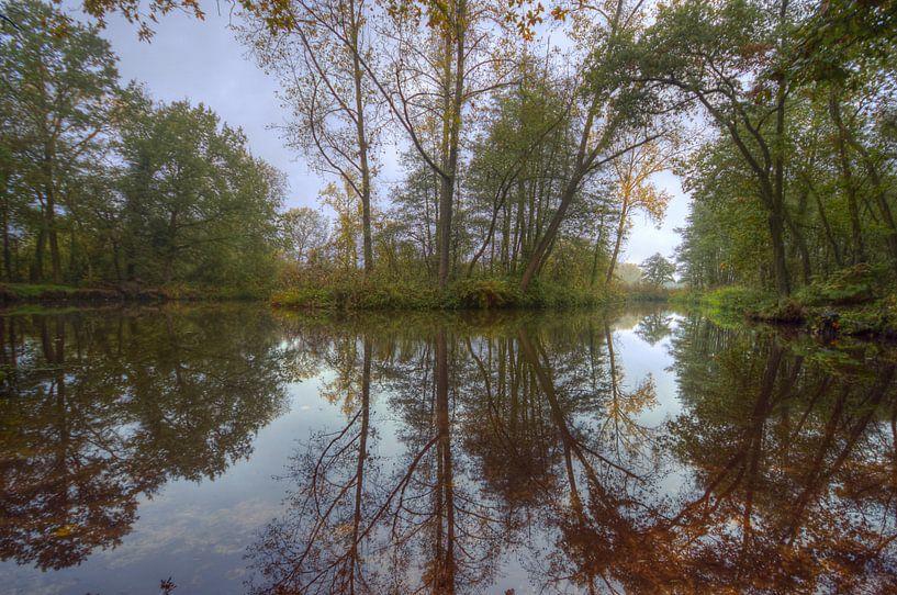 Landschap - Spiegel van Angelique Brunas