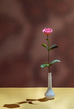 Roos met schaduw. van Lieke van Grinsven van Aarle
