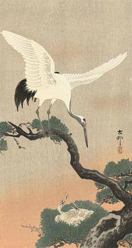 Japanischer Kranich auf dem Ast der Kiefer von Ohara Koson