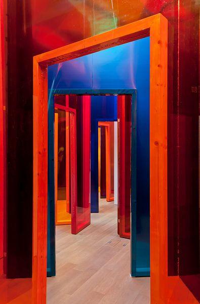 Kleurrijk Labyrint van Ellen Driesse