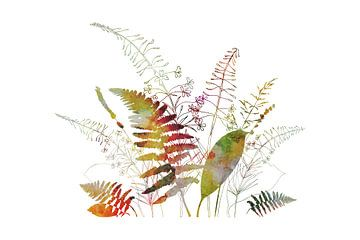 Farn verlässt, Fireweed, Lavendelwaldblumenstrauß - botanische Illustration von Dina Dankers