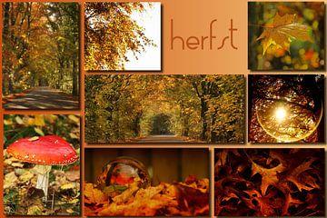 herfstcollage van Yvonne Blokland