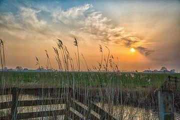 Landschap Holland van Willy Sybesma
