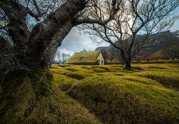 Église en Islande sur Thomas Kuipers