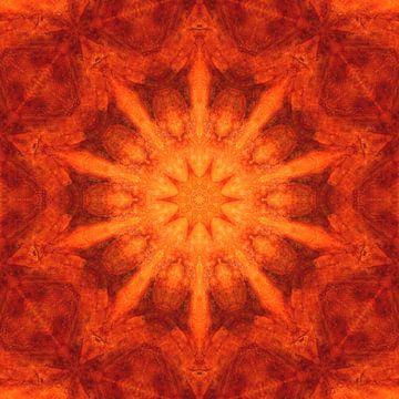 Mandala-sinaasappel - Bloem van het Leven van Marita Zacharias