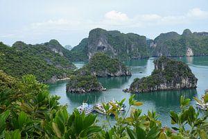 Wereld wonder Halong Bay in Vietnam van