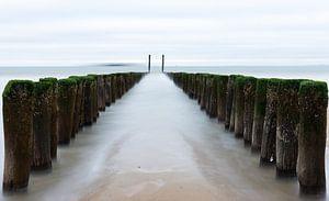 Paaltjes naar de zee