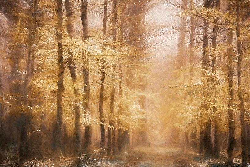 Chalkwood van Lars van de Goor