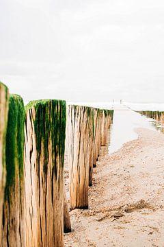 Seaside van Djuli Bravenboer