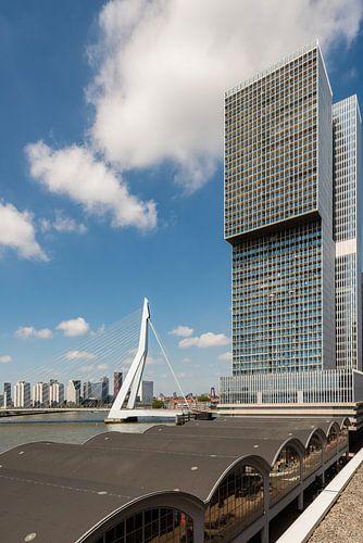 Die Rotterdam und die Erasmusbrücke (vertikal)