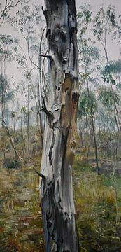 Australische Landschap boomstam van KB Prints