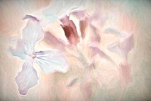 wilde bloemen in pastel