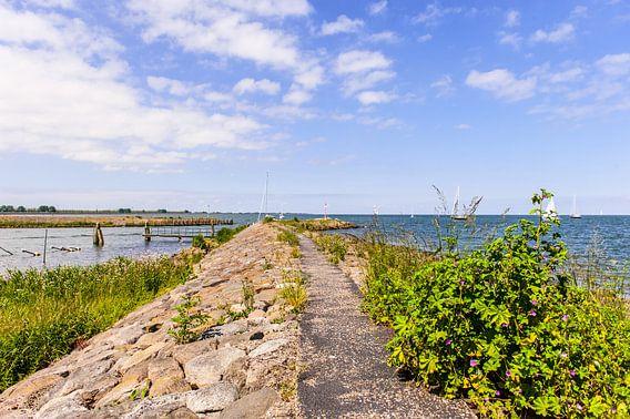 A Dutch shoreline