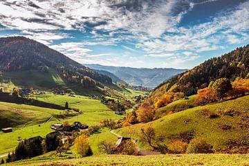 Vue sur le Münstertal sur Jürgen Wiesler
