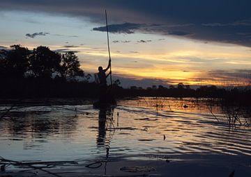Zonsondergang  in de Okavango delta van