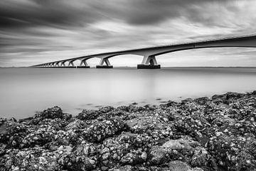 Die Zeelandbrücke von Gijs Koole