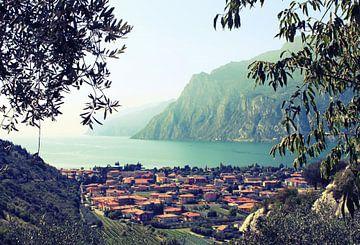Italia3 van Iris van Bokhorst