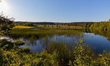 Landschap met een meer van Gottfried Carls
