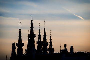 Türme Rathaus Löwen bei Einbruch der Dunkelheit von Manuel Declerck