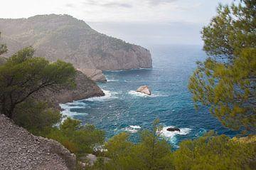 Ibiza (noordkant) von Marc van Gessel