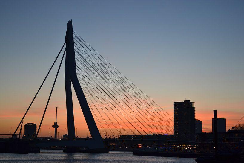 Erasmusbrug en Euromast Rotterdam. van Aletta Smits-Hessels