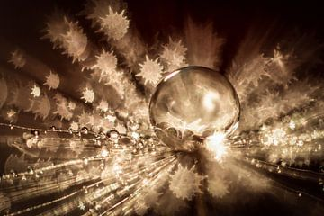 Droplet on a dandelion with bokeh sur Bert Nijholt