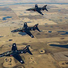 Koninklijke Canadese Luchtmacht CT-155 Hawks van Dirk Jan de Ridder