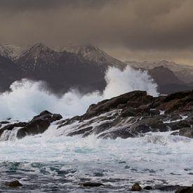 beukende golven van Karin Broekhuijsen