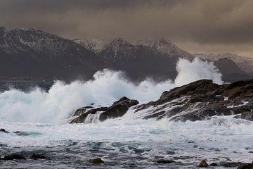beukende golven von Karin Broekhuijsen