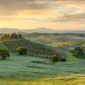 Die Toskana im frühen Morgenlicht von Michael Valjak