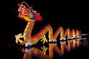 Dragon von Stefan Wapstra