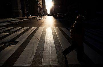 In die Schatten der Welt. von Graham Forrester