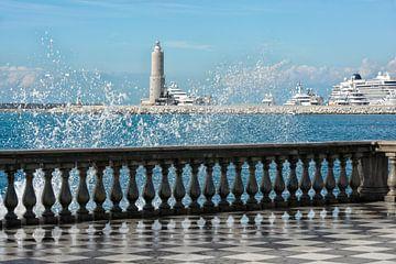 Haven van Livorno van Joachim G. Pinkawa