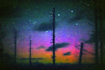 Totemforest noorderlicht. van Kaap Hoorn Gallery