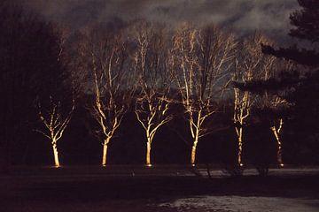 Fremde in der Nacht von Annelies Martinot