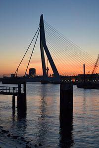 Erasmusbrug Rotterdam in avondlicht. van
