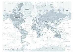 Decoratieve Wereldkaart in grijstinten